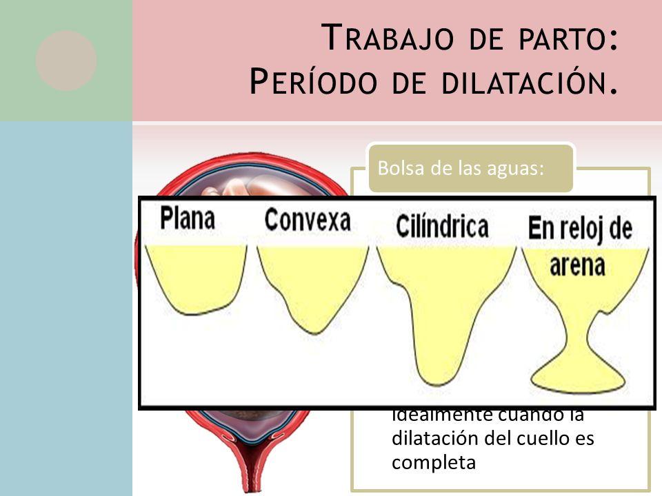 T RABAJO DE PARTO : P ERÍODO DE DILATACIÓN. Es la porción de liquido amniótico que se individualiza entre las membranas despegadas en la proximidades