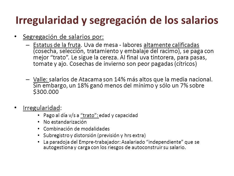 Irregularidad y segregación de los salarios Segregación de salarios por: – Estatus de la fruta. Uva de mesa - labores altamente calificadas (cosecha,