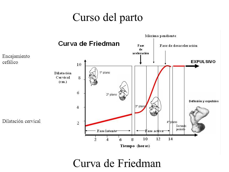 Curso del parto Encajamiento cefálico Dilatación cervical Curva de Friedman