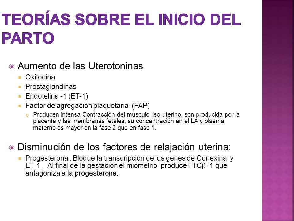 Aumento de las Uterotoninas Oxitocina Prostaglandinas Endotelina -1 (ET-1) Factor de agregación plaquetaria (FAP) Producen intensa Contracción del mús