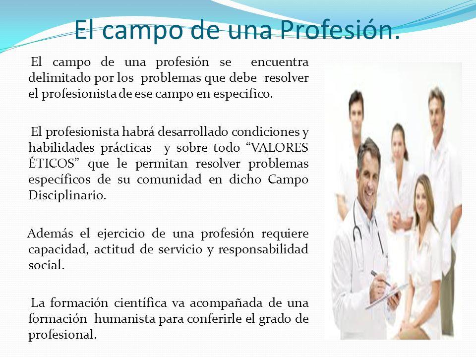 El campo de una Profesión. El campo de una profesión se encuentra delimitado por los problemas que debe resolver el profesionista de ese campo en espe