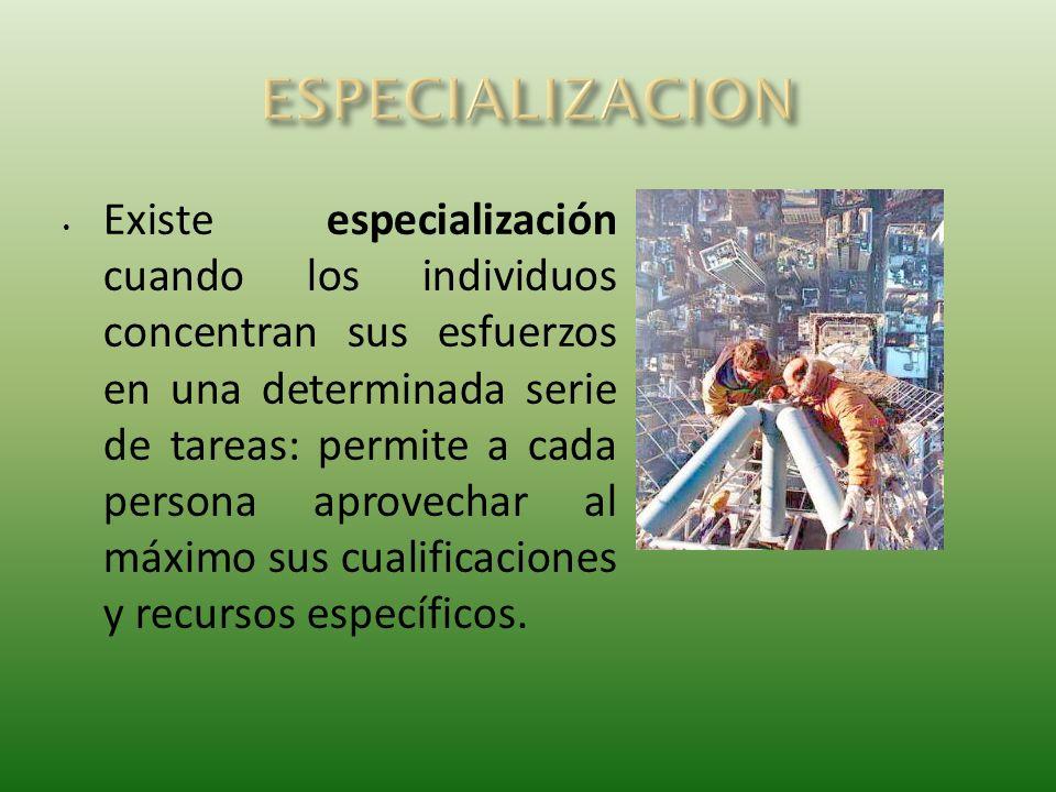Existe especialización cuando los individuos concentran sus esfuerzos en una determinada serie de tareas: permite a cada persona aprovechar al máximo