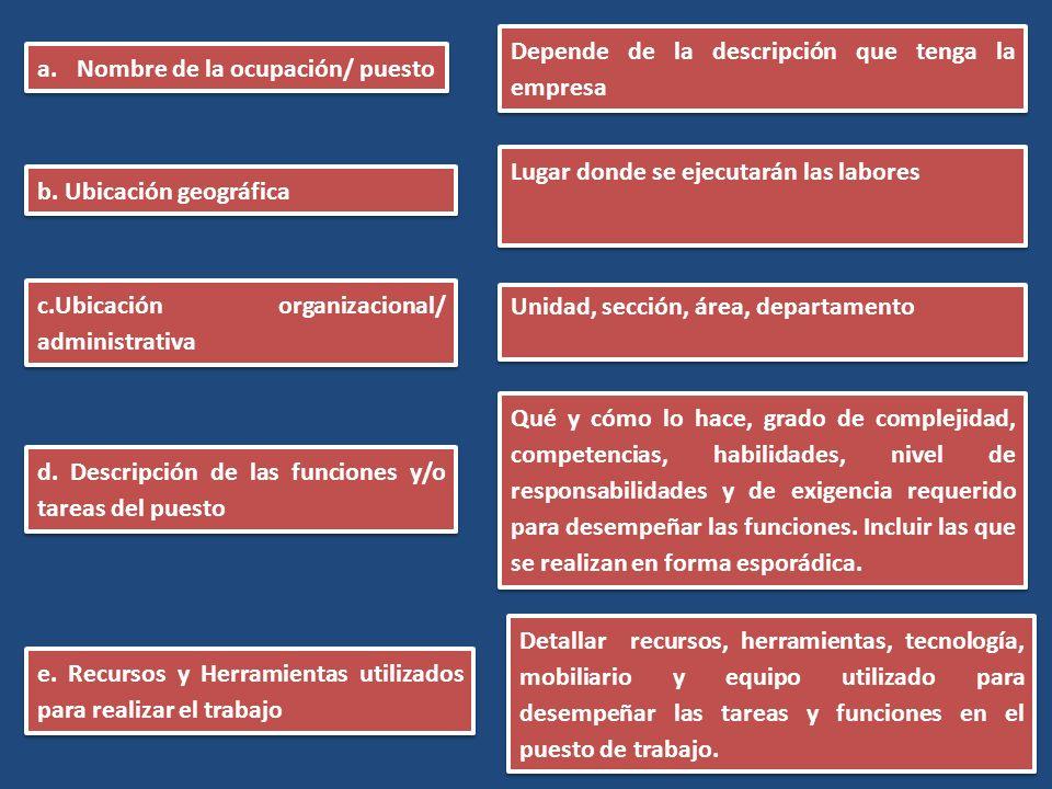IV.Principios orientadores 5. Ajustes razonables 6.