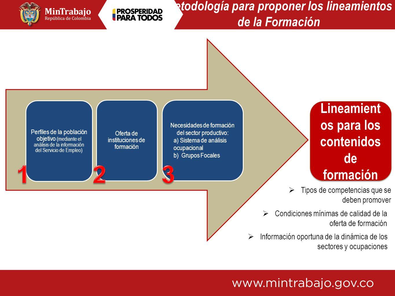 Metodología para proponer los lineamientos de la Formación Perfiles de la población objetivo (mediante el análisis de la información del Servicio de E