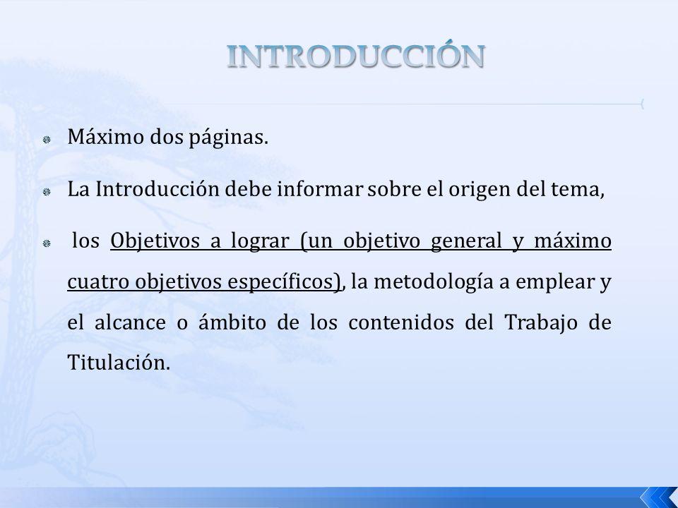 Máximo dos páginas. La Introducción debe informar sobre el origen del tema, los Objetivos a lograr (un objetivo general y máximo cuatro objetivos espe