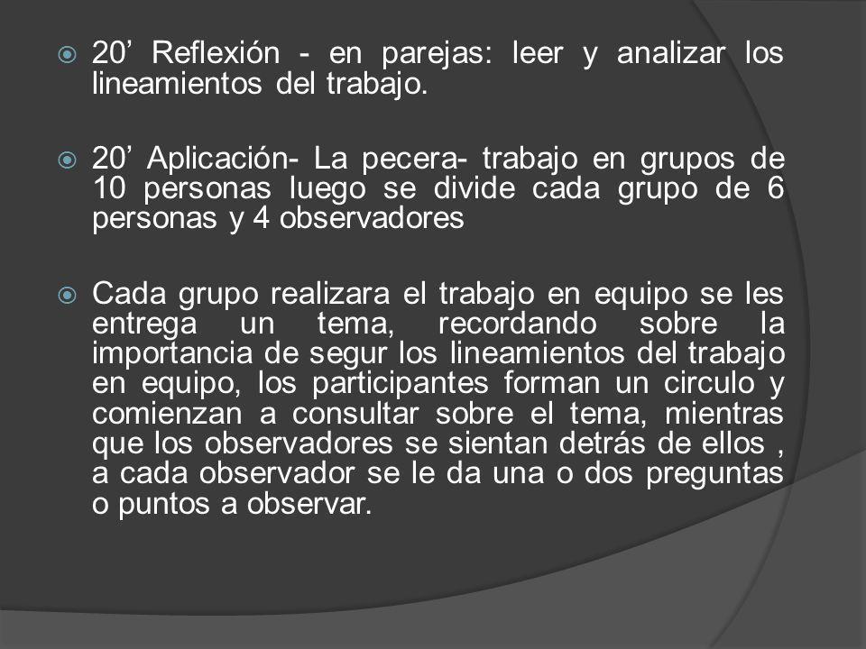 20 Reflexión - en parejas: leer y analizar los lineamientos del trabajo. 20 Aplicación- La pecera- trabajo en grupos de 10 personas luego se divide ca