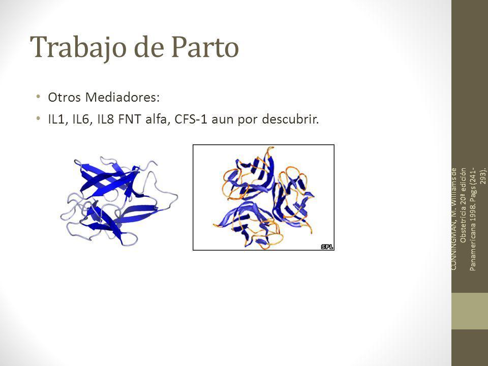 Trabajo de Parto Otros Mediadores: IL1, IL6, IL8 FNT alfa, CFS-1 aun por descubrir.