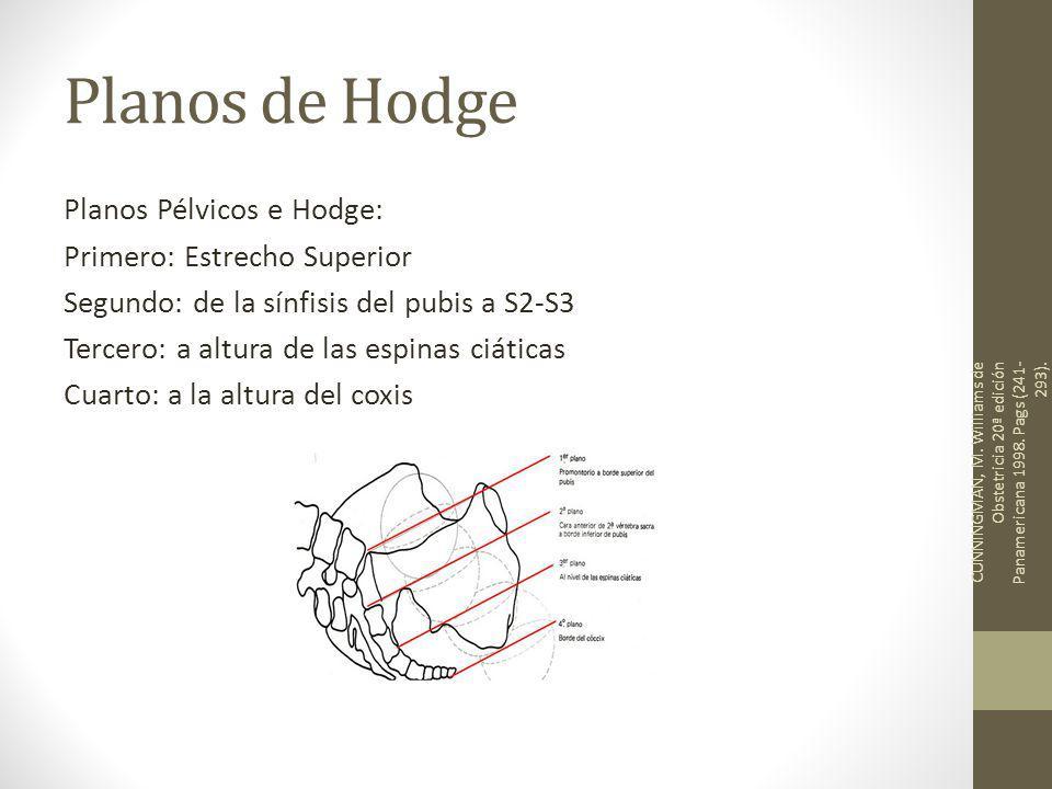 Planos de Hodge Planos Pélvicos e Hodge: Primero: Estrecho Superior Segundo: de la sínfisis del pubis a S2-S3 Tercero: a altura de las espinas ciáticas Cuarto: a la altura del coxis CUNNINGMAN, M.