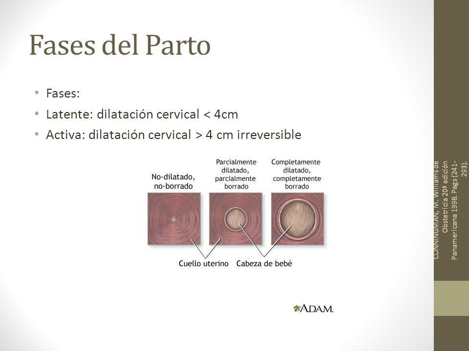 Fases del Parto Fases: Latente: dilatación cervical < 4cm Activa: dilatación cervical > 4 cm irreversible CUNNINGMAN, M. Williams de Obstetricia 20ª e