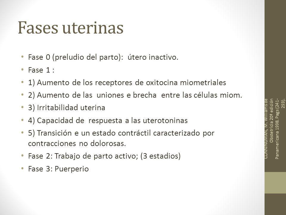 Fases uterinas Fase 0 (preludio del parto): útero inactivo. Fase 1 : 1) Aumento de los receptores de oxitocina miometriales 2) Aumento de las uniones