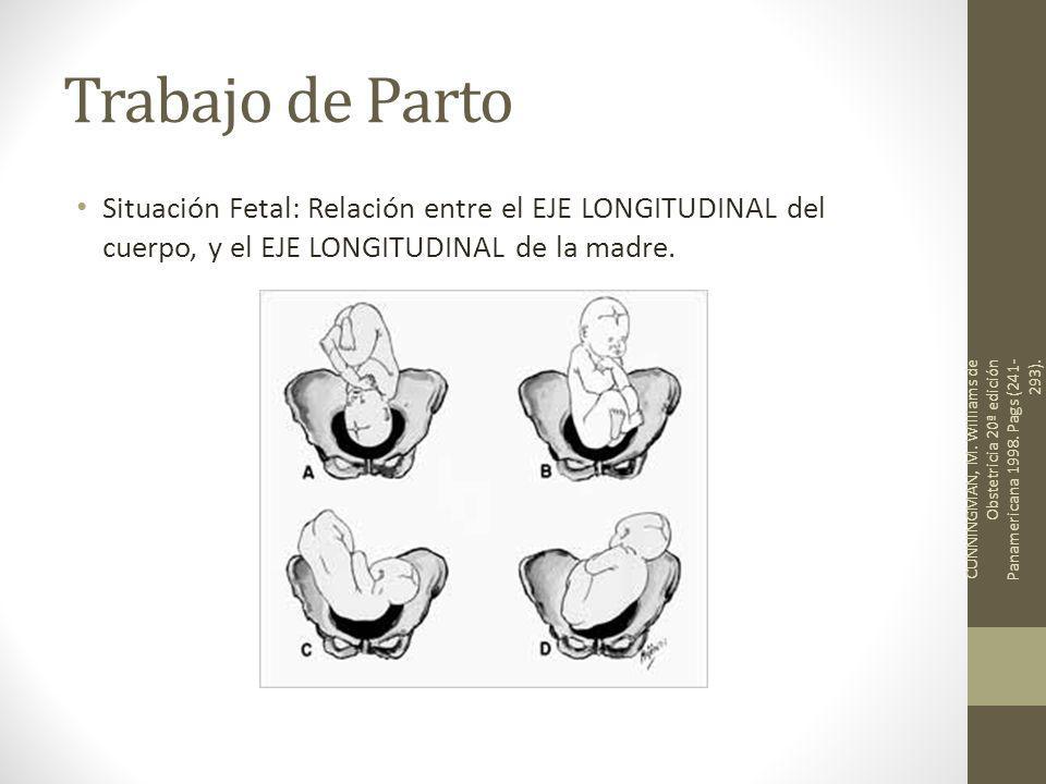 Trabajo de Parto Situación Fetal: Relación entre el EJE LONGITUDINAL del cuerpo, y el EJE LONGITUDINAL de la madre. CUNNINGMAN, M. Williams de Obstetr