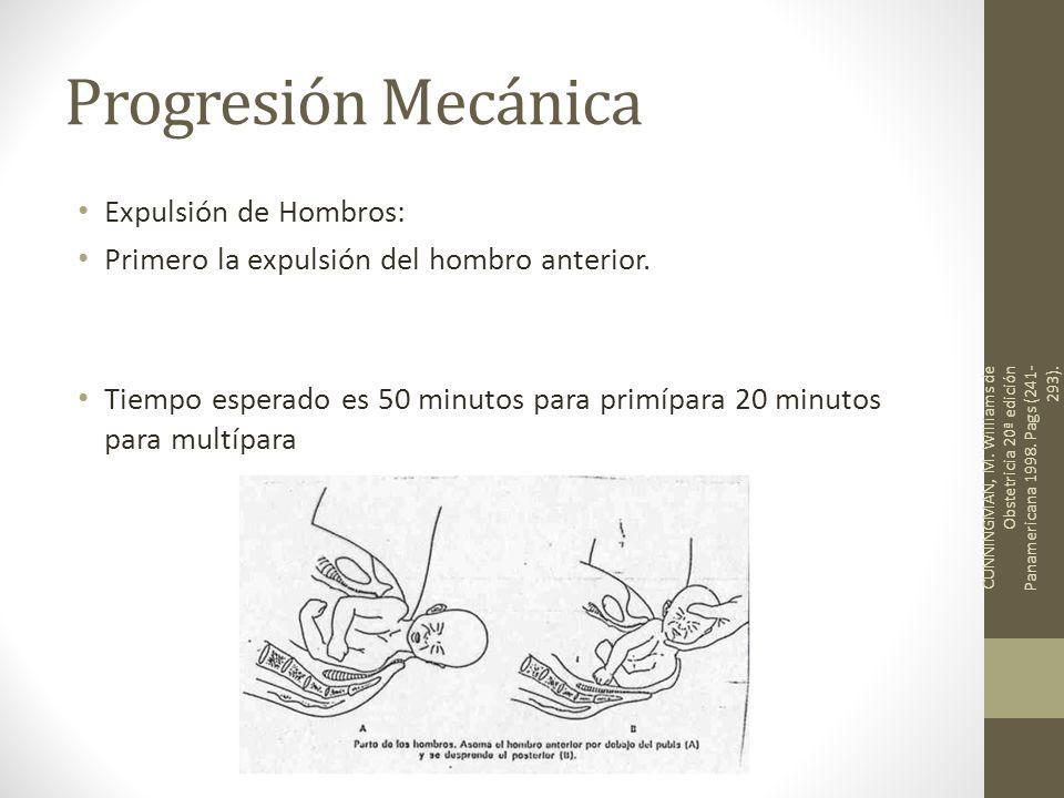 Progresión Mecánica Expulsión de Hombros: Primero la expulsión del hombro anterior. Tiempo esperado es 50 minutos para primípara 20 minutos para multí