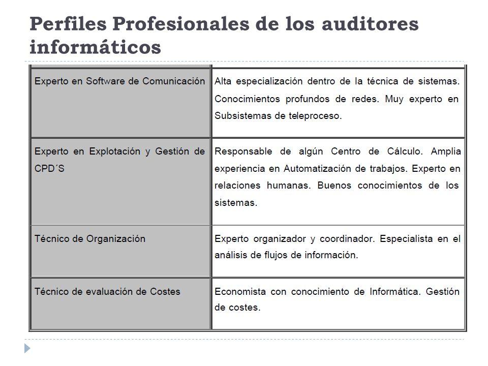 Elaboración del Plan y de los programas de trabajo El plan se elabora teniendo en cuenta, entre otros criterios, los siguientes: a) Si la Revisión debe realizarse por áreas generales o áreas específicas.