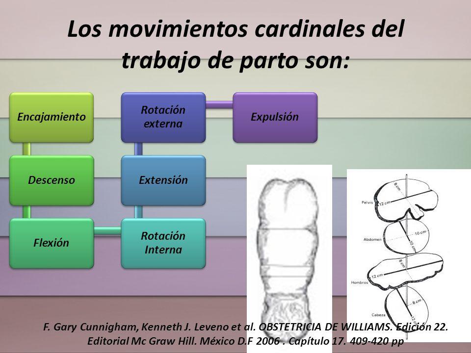 Los movimientos cardinales del trabajo de parto son: EncajamientoDescensoFlexión Rotación Interna Extensión Rotación externa Expulsión F. Gary Cunnigh