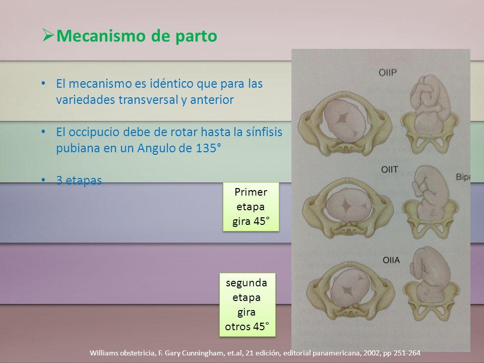 Mecanismo de parto El mecanismo es idéntico que para las variedades transversal y anterior El occipucio debe de rotar hasta la sínfisis pubiana en un