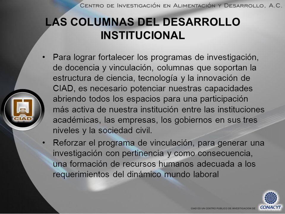 LAS COLUMNAS DEL DESARROLLO INSTITUCIONAL Para lograr fortalecer los programas de investigación, de docencia y vinculación, columnas que soportan la e