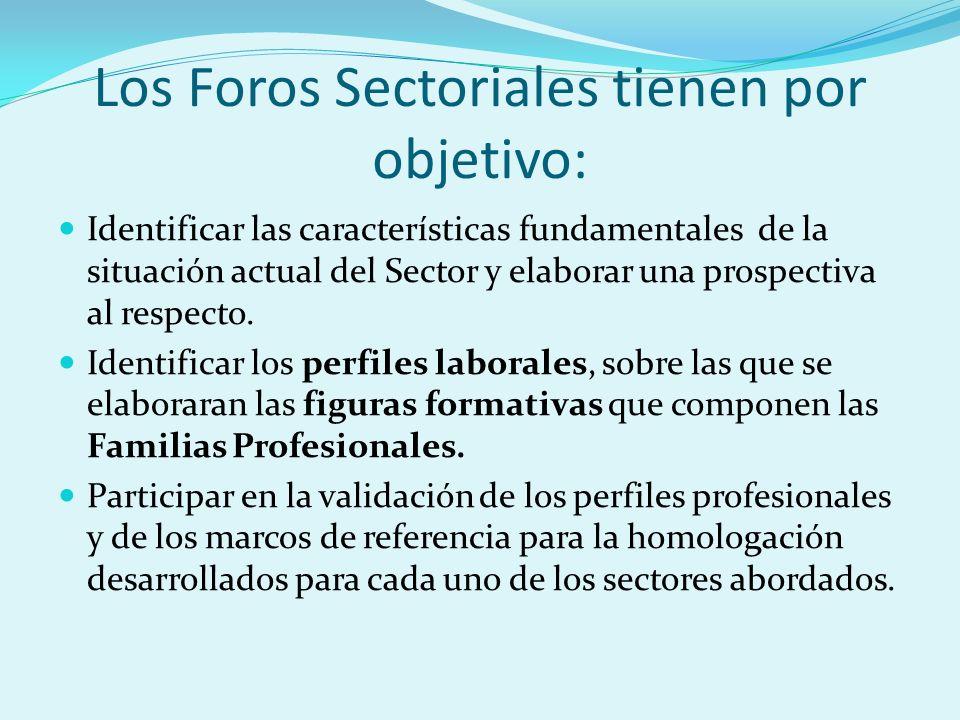 Los Foros Sectoriales tienen por objetivo: Identificar las características fundamentales de la situación actual del Sector y elaborar una prospectiva al respecto.