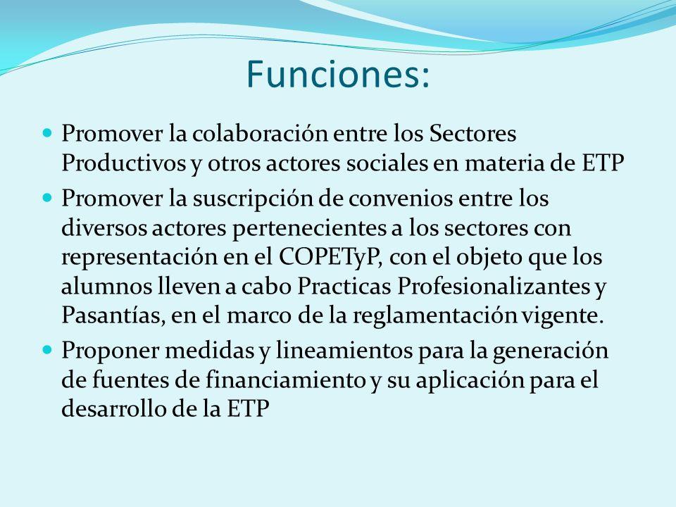Funciones: Promover la colaboración entre los Sectores Productivos y otros actores sociales en materia de ETP Promover la suscripción de convenios entre los diversos actores pertenecientes a los sectores con representación en el COPETyP, con el objeto que los alumnos lleven a cabo Practicas Profesionalizantes y Pasantías, en el marco de la reglamentación vigente.