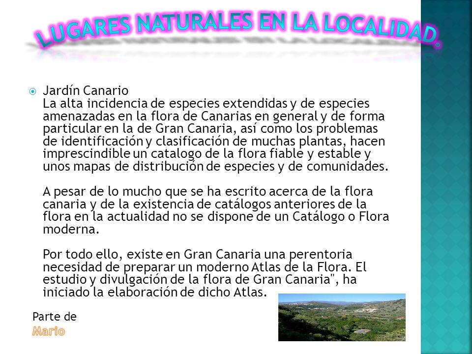 Gran Canaria ha sido declarada reserva de la Biosfera y prueba de ello son los espacios naturales únicos que ofrece.