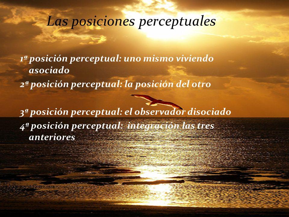 Las posiciones perceptuales 1ª posición perceptual: uno mismo viviendo asociado 2ª posición perceptual: la posición del otro 3ª posición perceptual: e