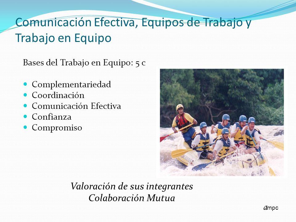 Comunicación Efectiva, Equipos de Trabajo y Trabajo en Equipo Bases del Trabajo en Equipo: 5 c Complementariedad Coordinación Comunicación Efectiva Co