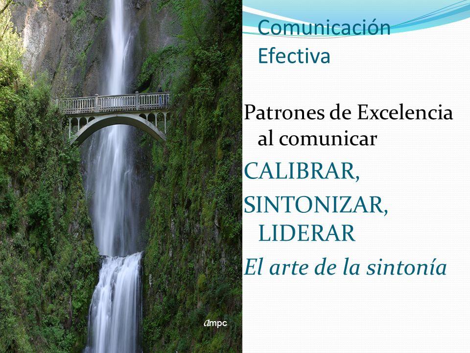 Comunicación Efectiva Patrones de Excelencia al comunicar CALIBRAR, SINTONIZAR, LIDERAR El arte de la sintonía a mpc