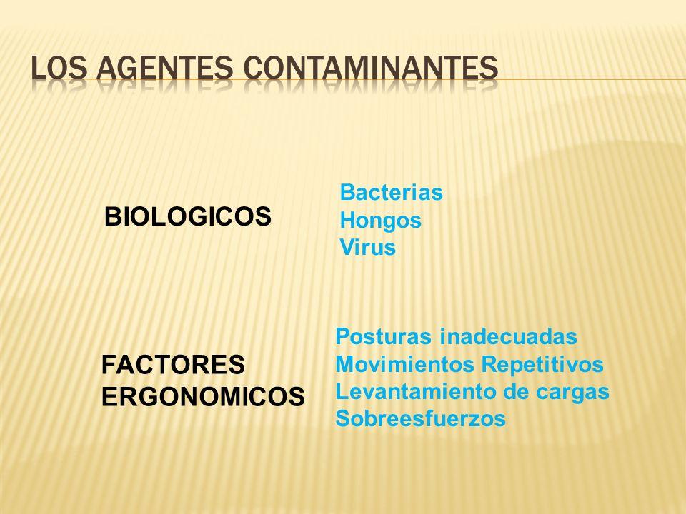 BIOLOGICOS FACTORES ERGONOMICOS Bacterias Hongos Virus Posturas inadecuadas Movimientos Repetitivos Levantamiento de cargas Sobreesfuerzos