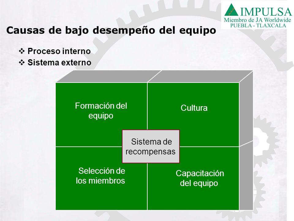 Proceso interno Sistema externo Selección de los miembros Capacitación del equipo Formación del equipo Cultura Sistema de recompensas Causas de bajo d