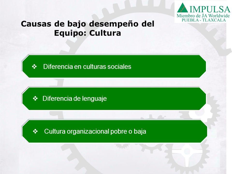 Diferencia en culturas sociales Diferencia de lenguaje Cultura organizacional pobre o baja Causas de bajo desempeño del Equipo: Cultura