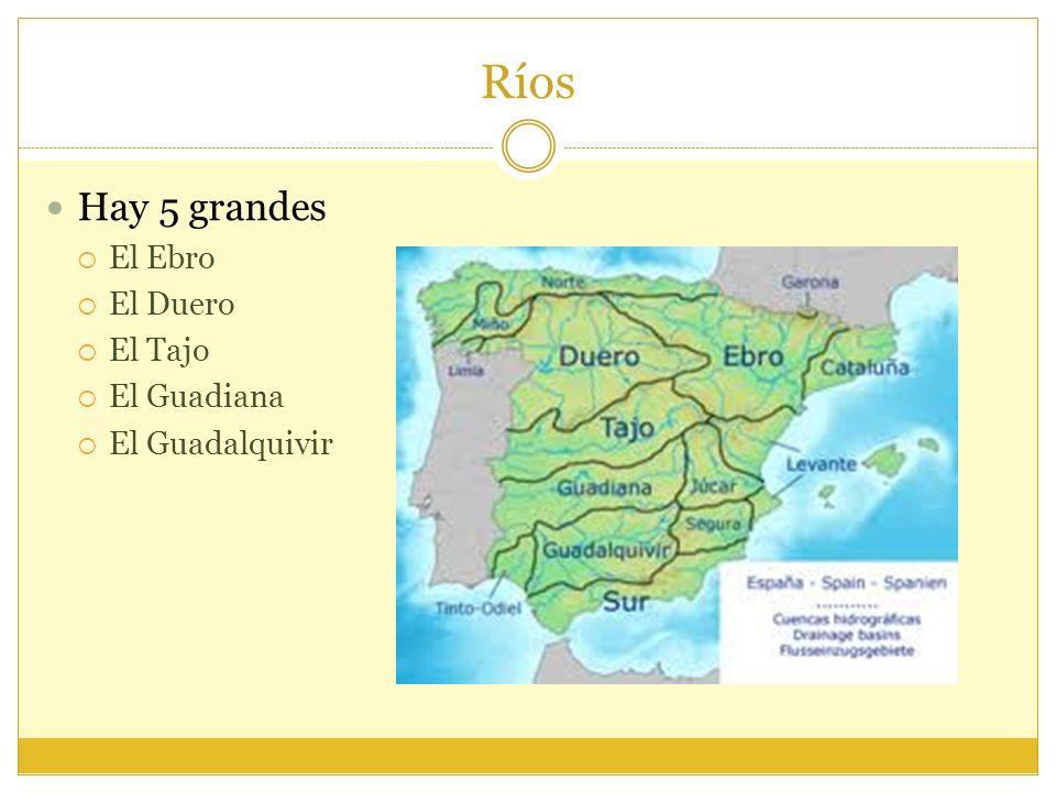 Ríos Hay 5 grandes El Ebro El Duero El Tajo El Guadiana El Guadalquivir