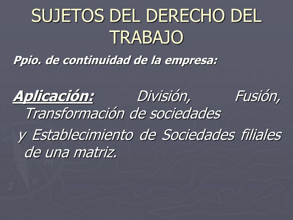 SUJETOS DEL DERECHO DEL TRABAJO Ppio. de continuidad de la empresa: Aplicación: División, Fusión, Transformación de sociedades y Establecimiento de So