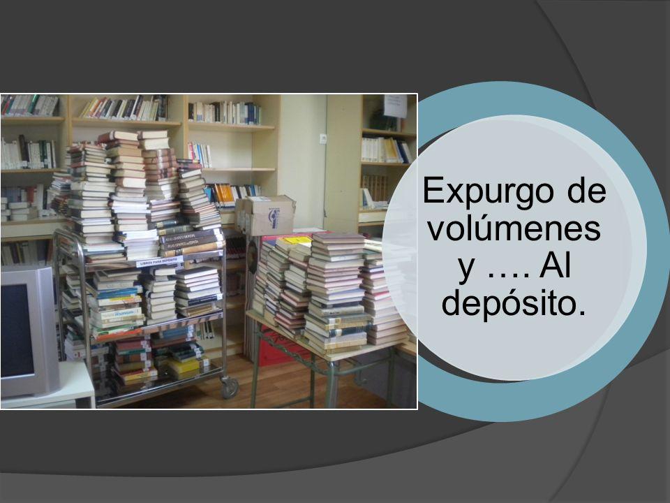 Los libros por los suelos