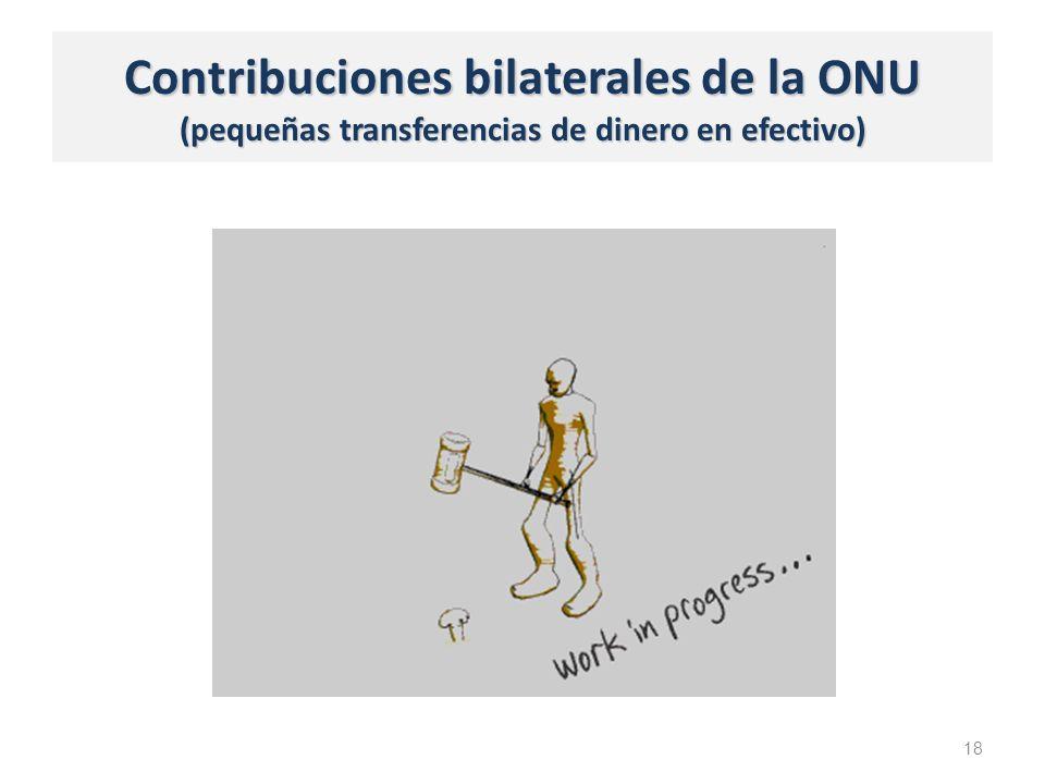 Contribuciones bilaterales de la ONU (pequeñas transferencias de dinero en efectivo) 18