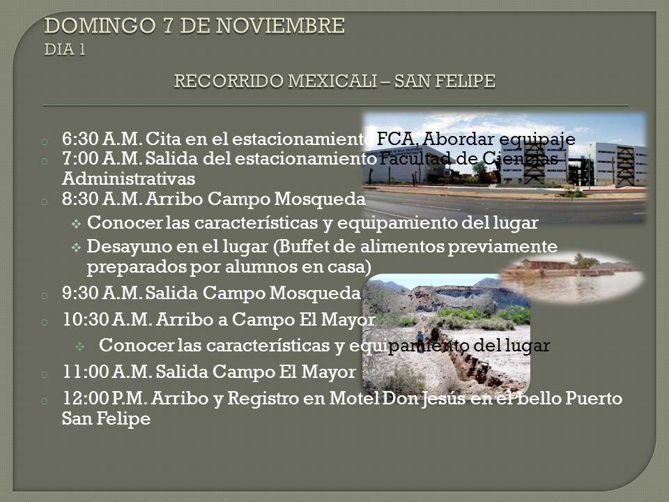 o 7:30 P.M.Salida Tour Grupal Recorrido Tijuana Nocturna Avenida Revolución o 10:00 P.M.