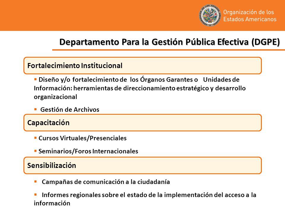 Departamento Para la Gestión Pública Efectiva (DGPE) Fortalecimiento Institucional Capacitación Sensibilización Diseño y/o fortalecimiento de los Órga