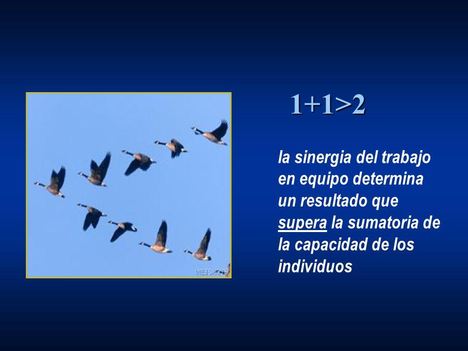 la sinergia del trabajo en equipo determina un resultado que supera la sumatoria de la capacidad de los individuos 1+1>2