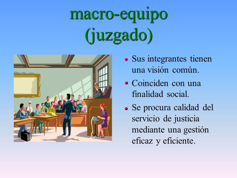 macro-equipo (juzgado) Sus integrantes tienen una visión común.