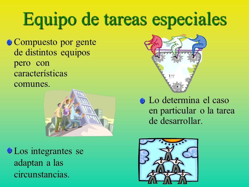Equipo de tareas especiales Compuesto por gente de distintos equipos pero con características comunes.