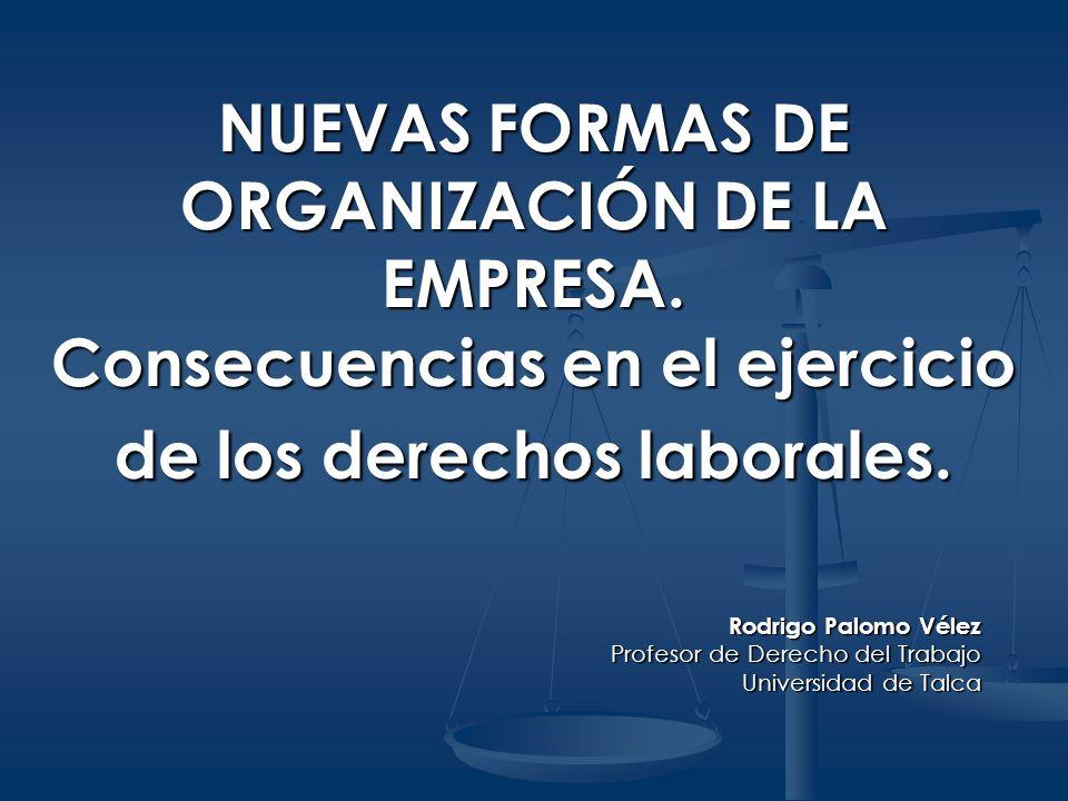 NUEVAS FORMAS DE ORGANIZACIÓN DE LA EMPRESA. Consecuencias en el ejercicio de los derechos laborales. Rodrigo Palomo Vélez Profesor de Derecho del Tra