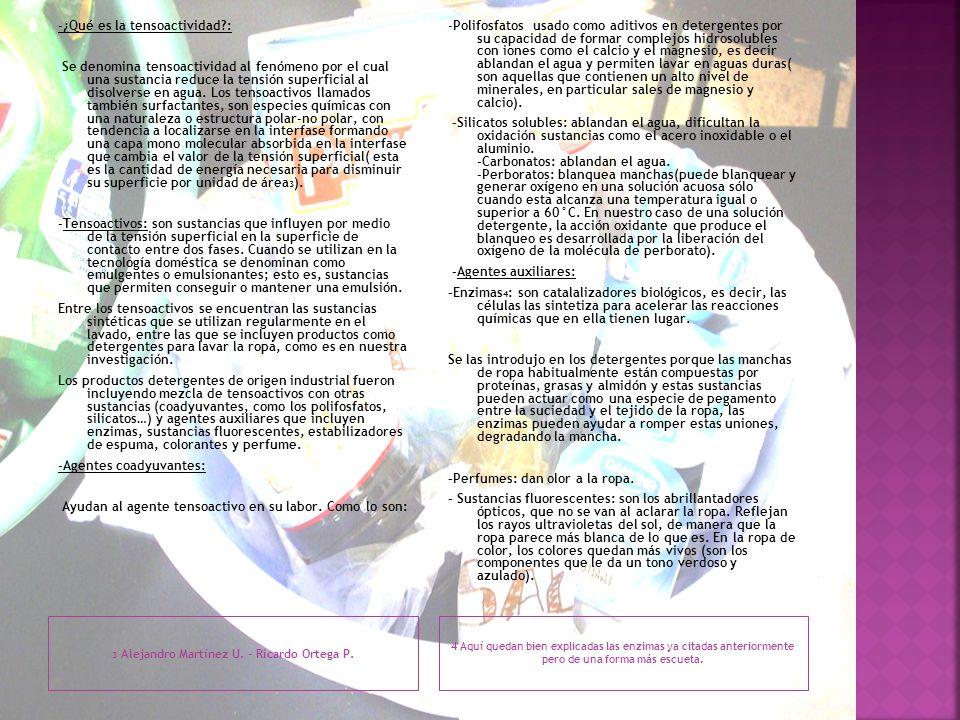 3 Alejandro Martínez U. - Ricardo Ortega P. 4 Aquí quedan bien explicadas las enzimas ya citadas anteriormente pero de una forma más escueta. -¿Qué es