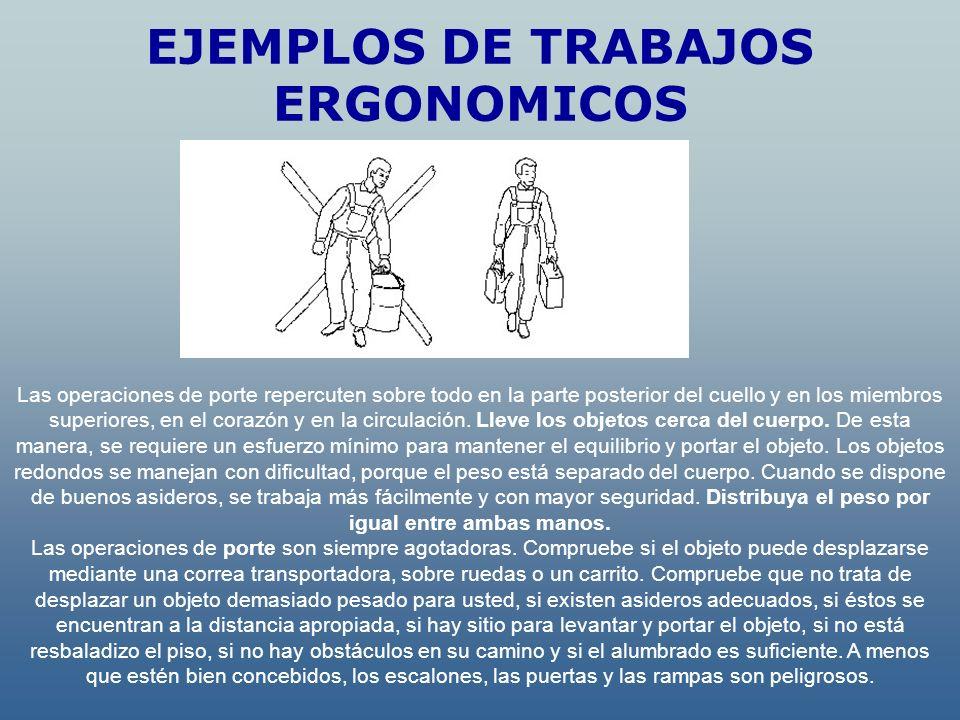 EJEMPLOS DE TRABAJOS ERGONOMICOS Las operaciones de porte repercuten sobre todo en la parte posterior del cuello y en los miembros superiores, en el c