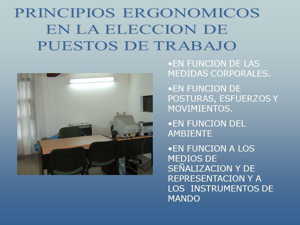 EN FUNCION DE LAS MEDIDAS CORPORALES. EN FUNCION DE POSTURAS, ESFUERZOS Y MOVIMIENTOS. EN FUNCION DEL AMBIENTE EN FUNCION A LOS MEDIOS DE SEÑALIZACION