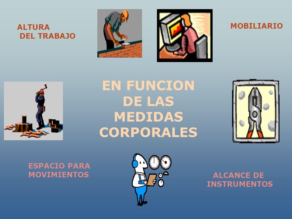 EN FUNCION DE LAS MEDIDAS CORPORALES ALTURA DEL TRABAJO MOBILIARIO ESPACIO PARA MOVIMIENTOS ALCANCE DE INSTRUMENTOS
