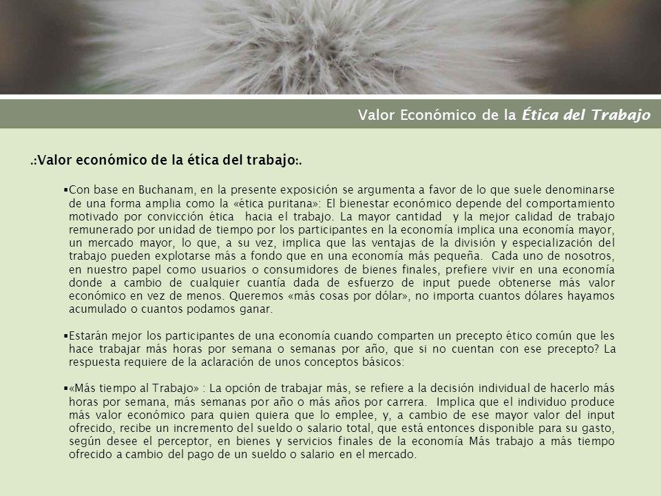 Valor Económico de la Ética del Trabajo.: Suposiciones :.