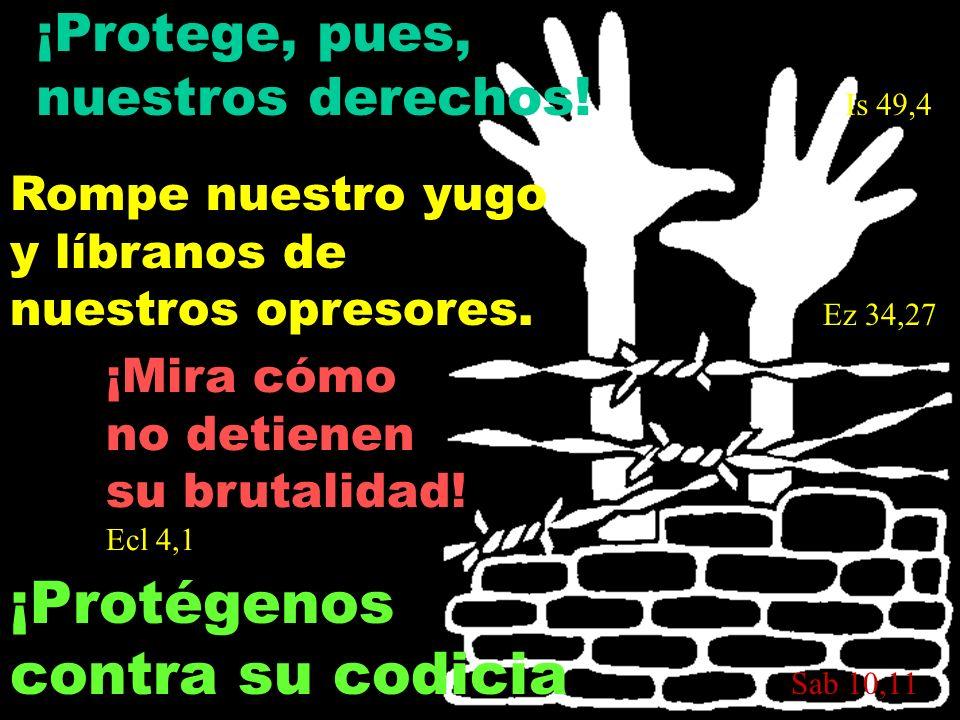 ¡Protege, pues, nuestros derechos! Is 49,4 ¡Protégenos contra su codicia S ab 10,11 Rompe nuestro yugo y líbranos de nuestros opresores. Ez 34,27 ¡Mir