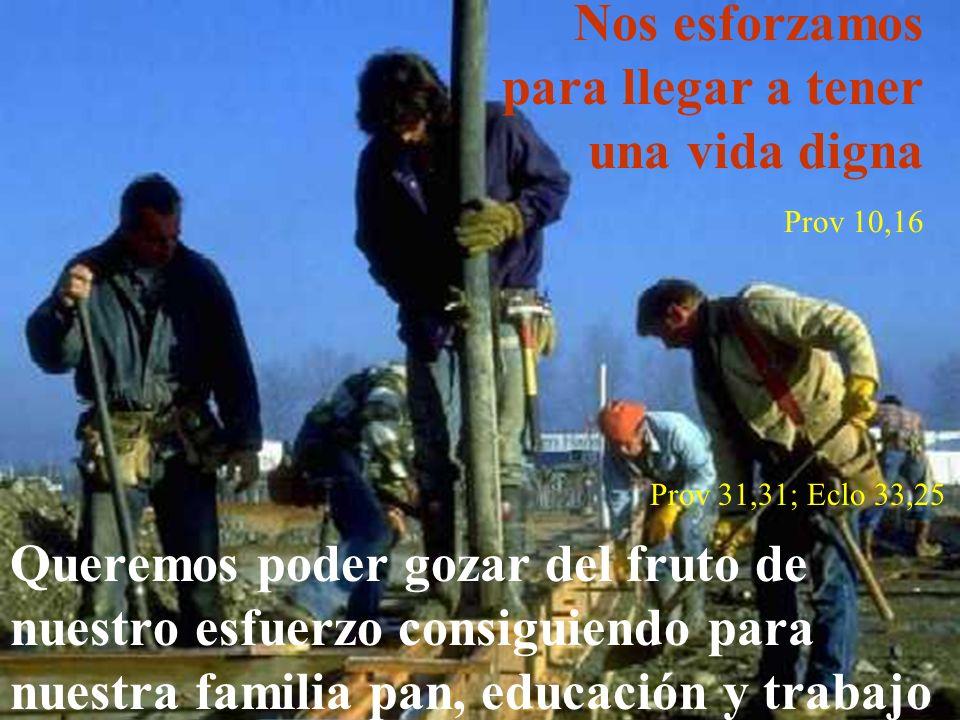 Nos esforzamos para llegar a tener una vida digna Prov 10,16 Prov 31,31; Eclo 33,25 Queremos poder gozar del fruto de nuestro esfuerzo consiguiendo pa