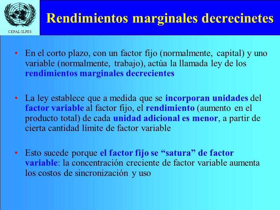 CEPAL/ILPES Rendimientos marginales decrecinetes En el corto plazo, con un factor fijo (normalmente, capital) y uno variable (normalmente, trabajo), a