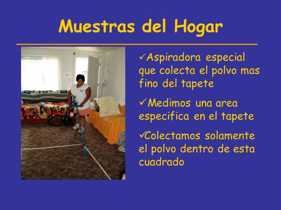Muestras del Hogar Aspiradora especial que colecta el polvo mas fino del tapete Medimos una area especifica en el tapete Colectamos solamente el polvo