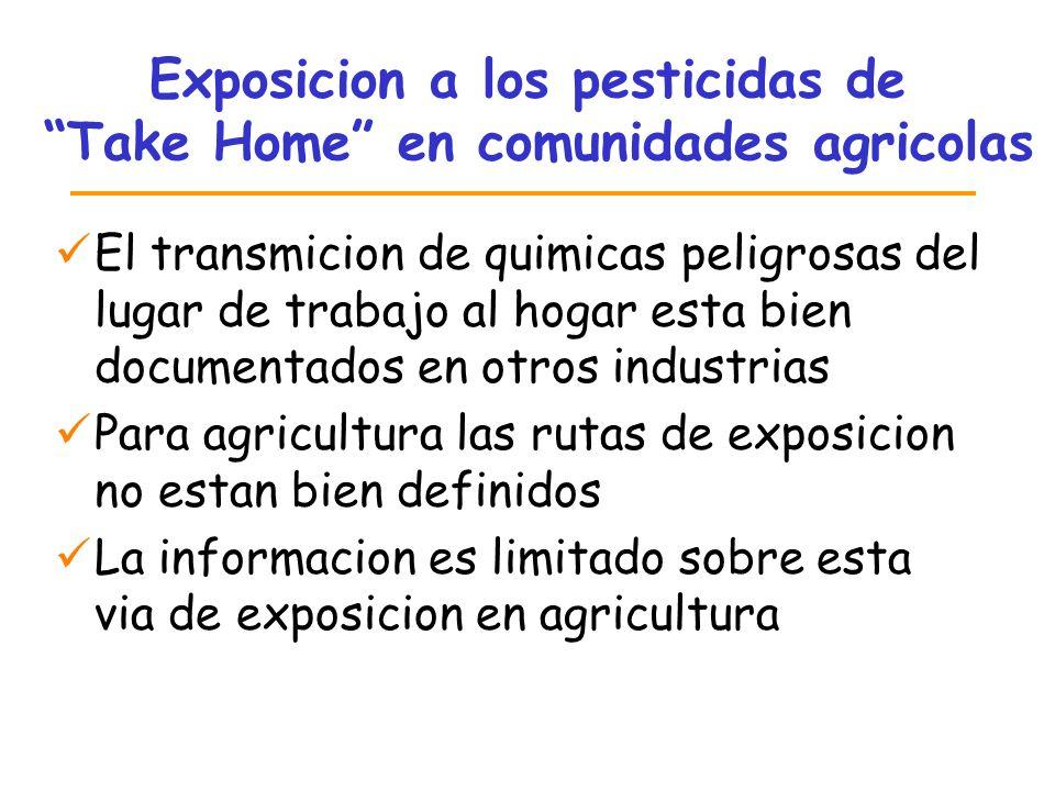 Exposicion a los pesticidas de Take Home en comunidades agricolas El transmicion de quimicas peligrosas del lugar de trabajo al hogar esta bien docume