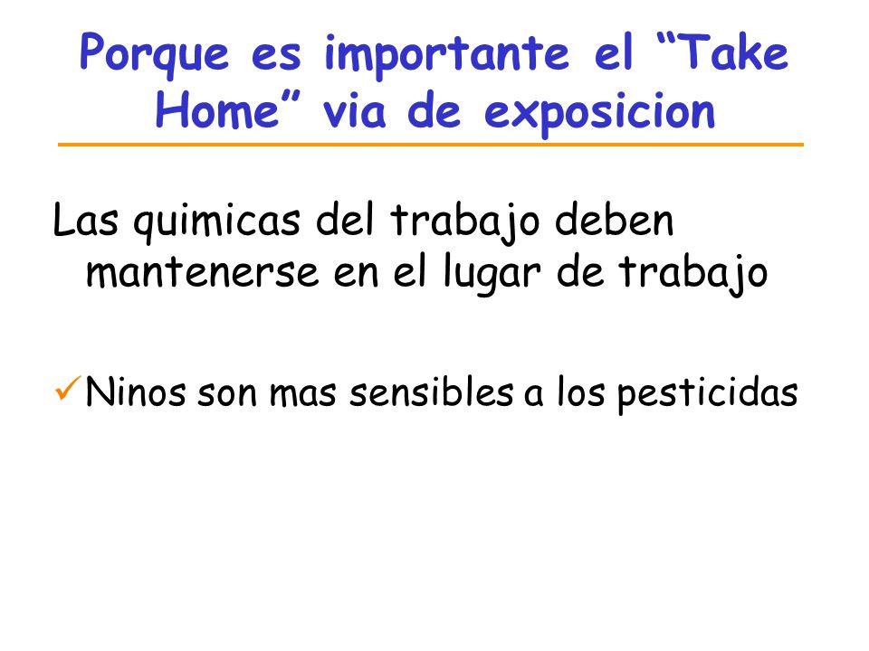 Porque es importante el Take Home via de exposicion Las quimicas del trabajo deben mantenerse en el lugar de trabajo Ninos son mas sensibles a los pes